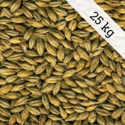Dingemans plzeňský slad 25kg